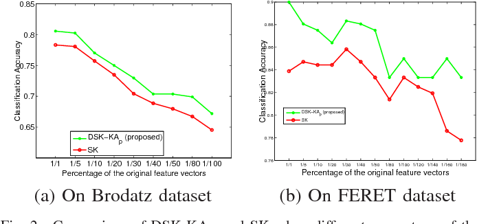 Figure 2 for Learning Discriminative Stein Kernel for SPD Matrices and Its Applications