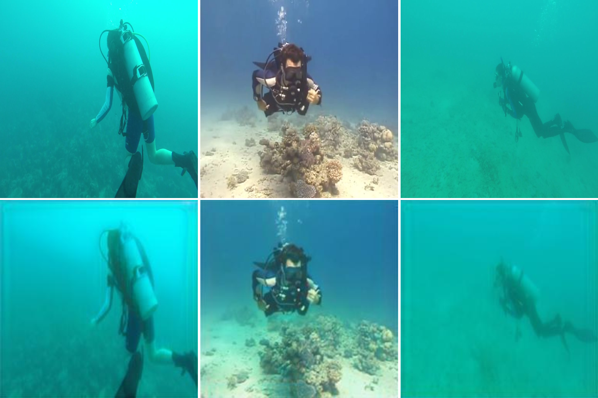 Figure 3 for A Generative Approach for Detection-driven Underwater Image Enhancement
