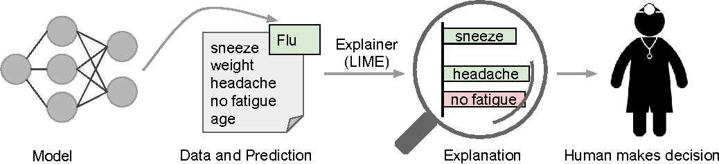 """Figure 1 for """"Why Should I Trust You?"""": Explaining the Predictions of Any Classifier"""
