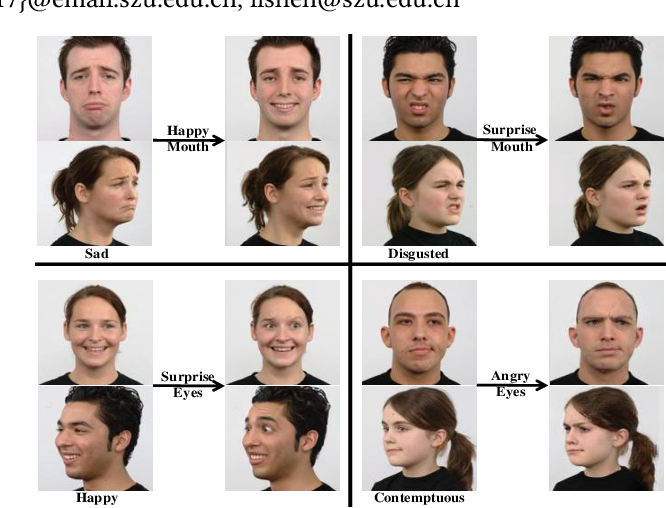 Figure 1 for Translate the Facial Regions You Like Using Region-Wise Normalization