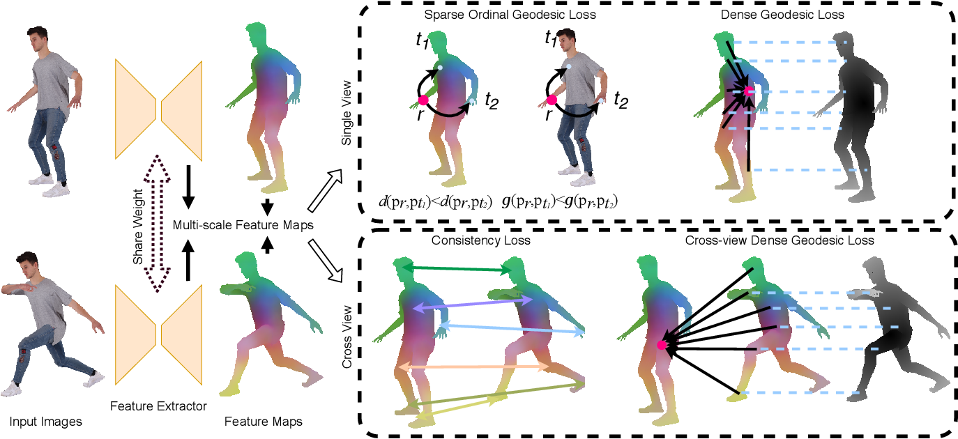 Figure 4 for HumanGPS: Geodesic PreServing Feature for Dense Human Correspondences