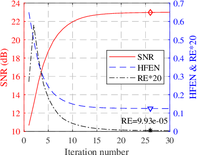 Figure 2 for Iterative Self-consistent Parallel Magnetic Resonance Imaging Reconstruction based on Nonlocal Low-Rank Regularization