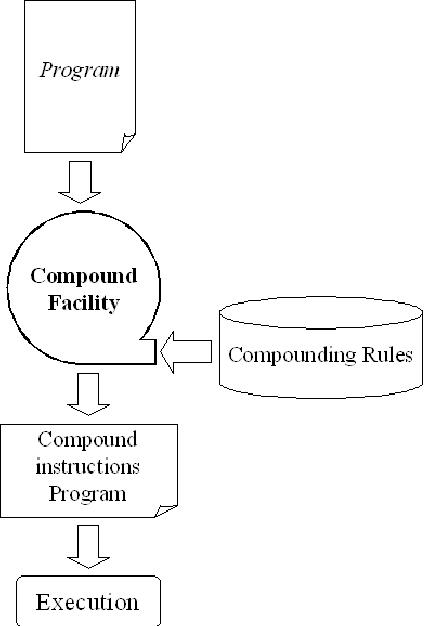 Fig. 1. SCISM program execution flow