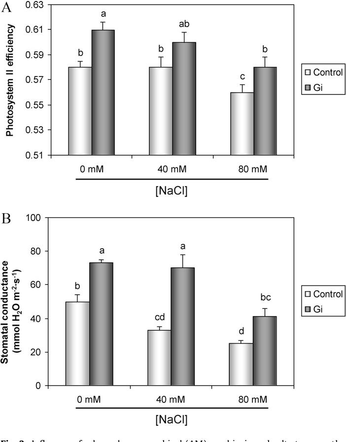 Figure 3 from Arbuscular mycorrhizal symbiosis influences