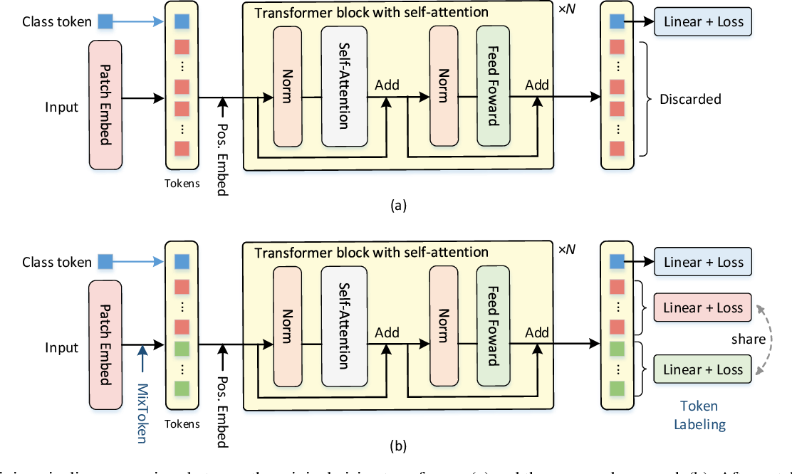 Figure 3 for Token Labeling: Training a 85.4% Top-1 Accuracy Vision Transformer with 56M Parameters on ImageNet