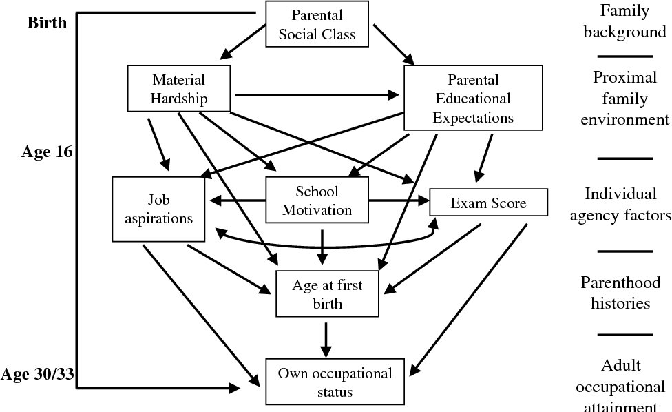Figure 2 from Career transitions in times of social change