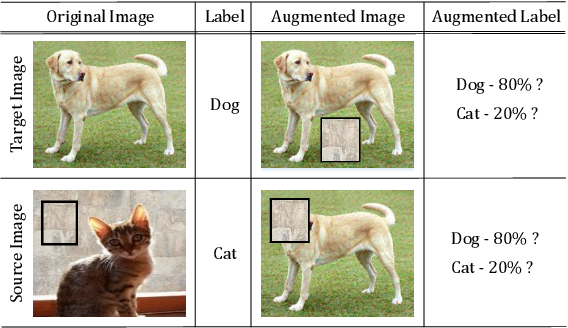 Figure 1 for SaliencyMix: A Saliency Guided Data Augmentation Strategy for Better Regularization