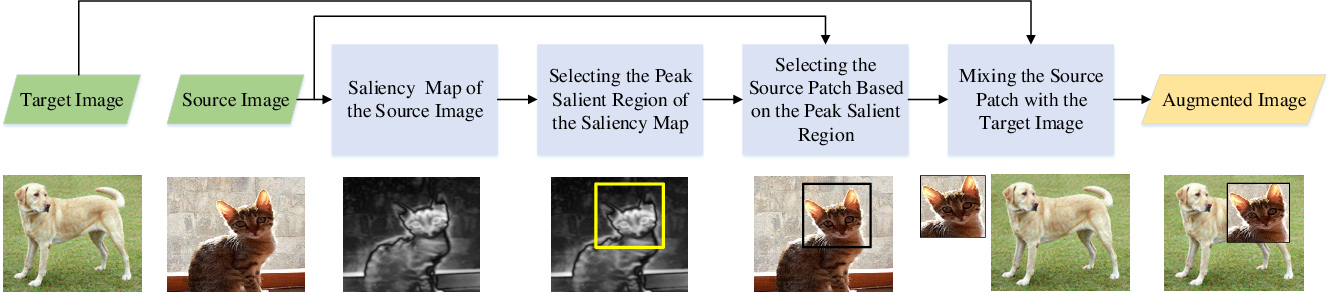 Figure 3 for SaliencyMix: A Saliency Guided Data Augmentation Strategy for Better Regularization
