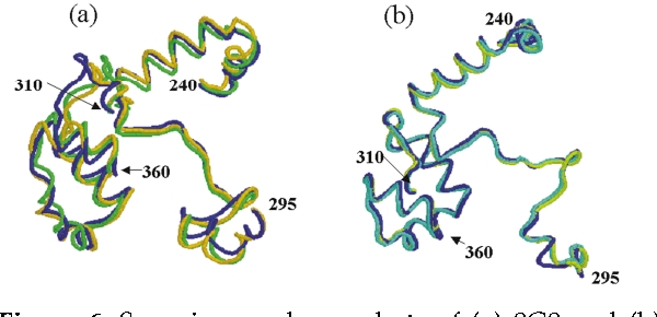 Figure 6. Superimposed snapshots of (a) 8G8 and (b) wild-type taken at 100 ps (blue), 300 ps (green), and 500 ps (yellow). Residues 240–300 and 310–360 are shown.