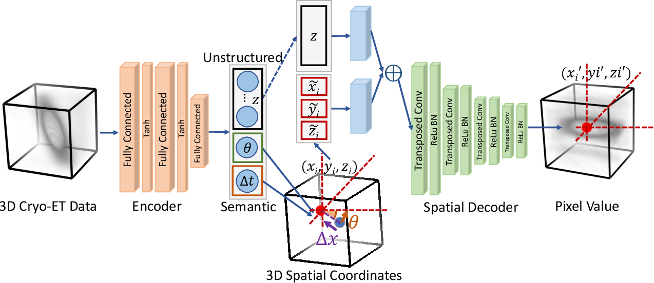 Figure 1 for Disentangling semantic features of macromolecules in Cryo-Electron Tomography
