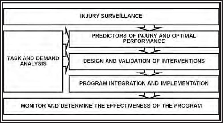 PDF] Warrior Model for Human Performance and Injury Prevention