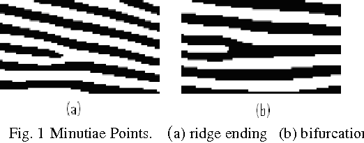 Figure 1 for Minutiae Extraction from Fingerprint Images - a Review