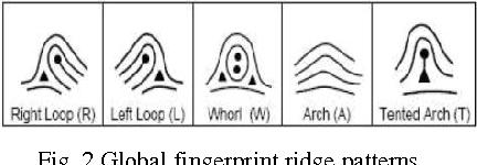 Figure 2 for Minutiae Extraction from Fingerprint Images - a Review