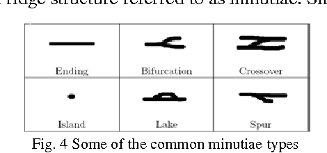 Figure 4 for Minutiae Extraction from Fingerprint Images - a Review