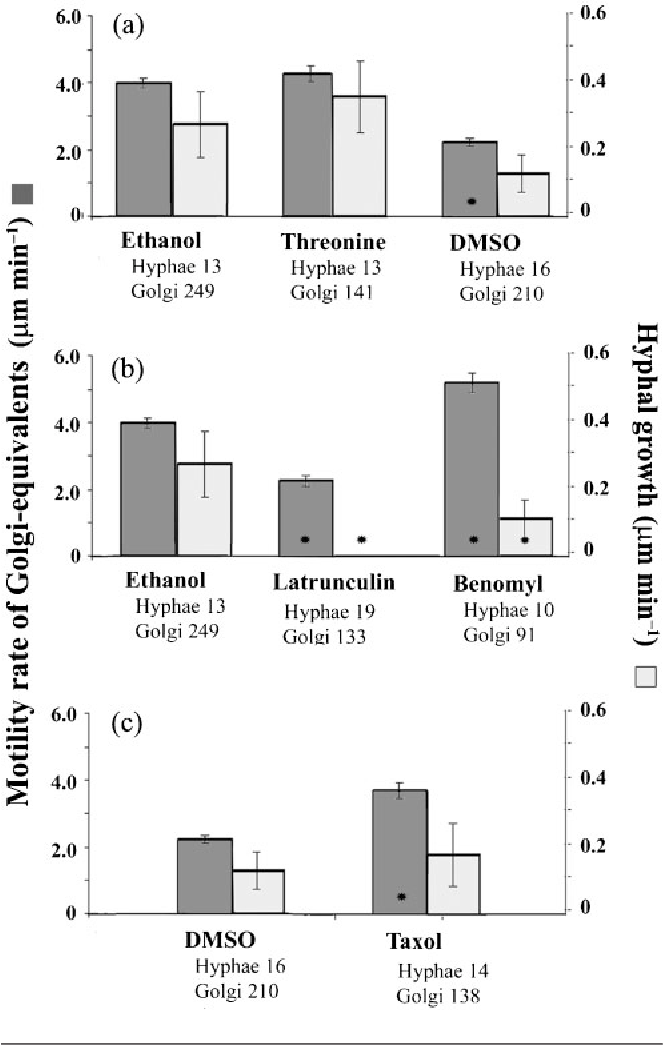 "Fig. 4. Effect of solvents and cytoskeleton-inhibitory drugs on anterograde GE movement (dark-grey bars) and hyphal growth rates (light-grey bars) in wild-type-phenotype A. nidulans hyphae of strain AAB1 grown at 28 6C. Error bars show SEM. The rate of anterograde GE movement was always at least 10-fold higher than the growth rate in the same cells; note that the y-axis scales are 10-fold different. Retrograde and lateral movements were not significantly affected. Asterisks indicate a significant change compared with the respective control (P,0.05, ANOVA). (a) Effect of the AlcA inducers 1.0 % ethanol and 0.5 % threonine, and of 0.25 % DMSO in 1.0 % ethanol. The rates of GE movement and growth were similar for ethanol and threonine, but DMSO caused a significant reduction in GE movement but not growth rate. (b) Effect of 5 mg latrunculin B ml""1 and 1 mg benomyl ml""1, which target actin and MTs, respectively. Latrunculin treatment significantly reduced both GE movement and growth rate, whereas benomyl treatment increased GE motility while reducing growth rate. (c) Effect of 50 mM taxol in 0.25 % DMSO. Compared with the control treatment, taxol significantly increased GE anterograde movement rate without increasing hyphal growth rate."