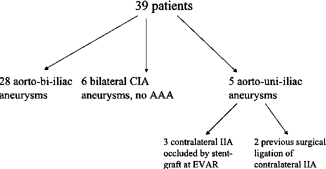 Structure of internal iliac artery - Semantic Scholar