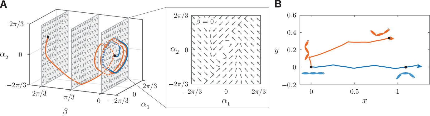Figure 3 for Learning to swim in potential flow