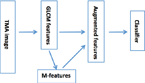 Figure 4 for Learning Low-dimensional Manifolds for Scoring of Tissue Microarray Images