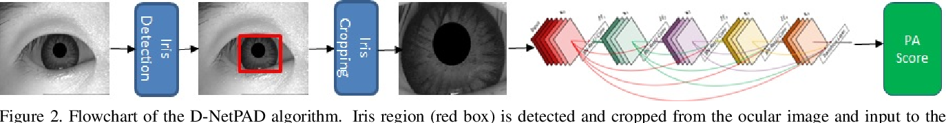 Figure 3 for D-NetPAD: An Explainable and Interpretable Iris Presentation Attack Detector