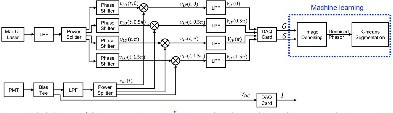 Figure 1 for Convolutional Neural Network Denoising in Fluorescence Lifetime Imaging Microscopy (FLIM)