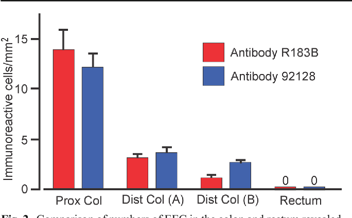 Fig. 2 Comparison of numbers of EEC in the colon and rectum revealed by antibodies R183B (pan CCK-gastrin antibody) and 92128 (antisulfated CCK-8). Zeros indicate that EEC were not seen with either antibody in the rectum