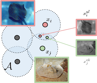 Figure 4 for Representation Learning via Invariant Causal Mechanisms