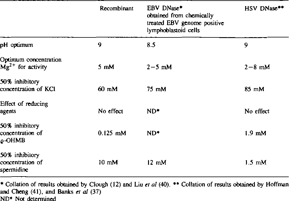 Table 2. A comparison of the biochemical characteristics of the HSV and EBV alkaline DNases with the recombinant EBV nuclease produced in E. coli