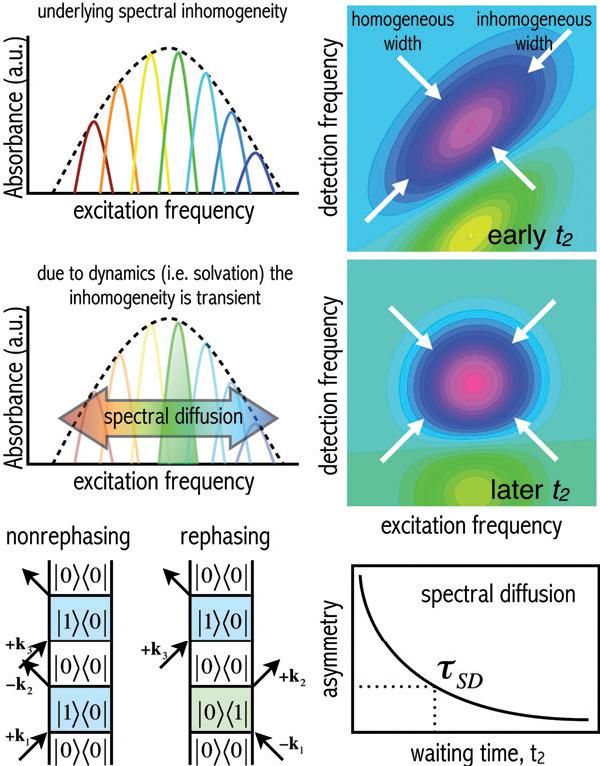 PDF] Ultrafast equilibrium and non-equilibrium chemical