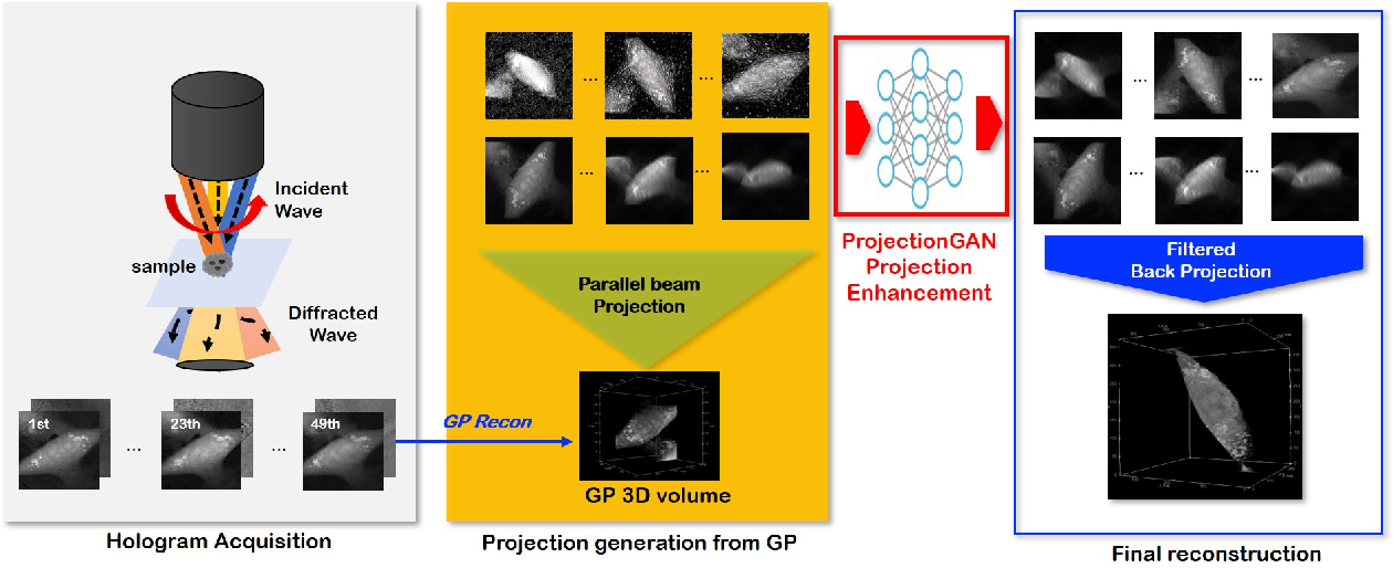 Figure 1 for Unsupervised Missing Cone Deep Learning in Optical Diffraction Tomography