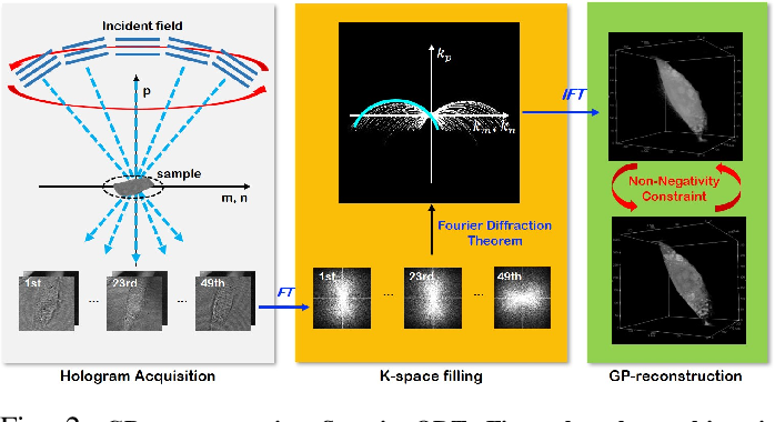 Figure 3 for Unsupervised Missing Cone Deep Learning in Optical Diffraction Tomography