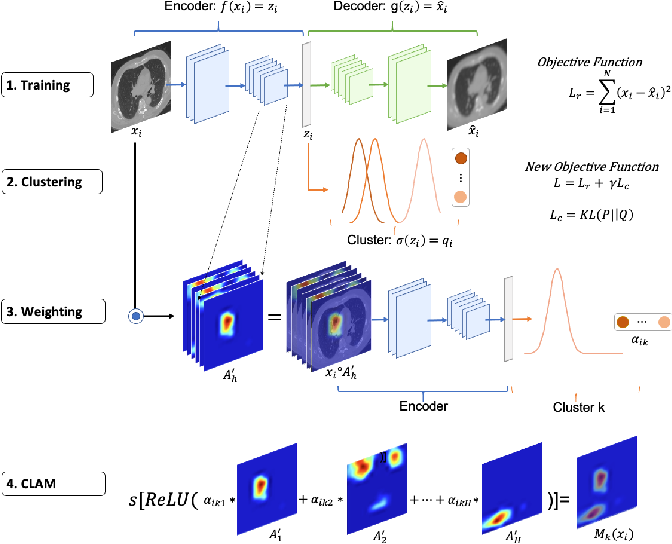 Figure 1 for Cluster Activation Mapping with Applications to Medical Imaging