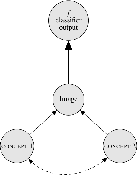 Figure 1 for Explaining Classifiers with Causal Concept Effect (CaCE)