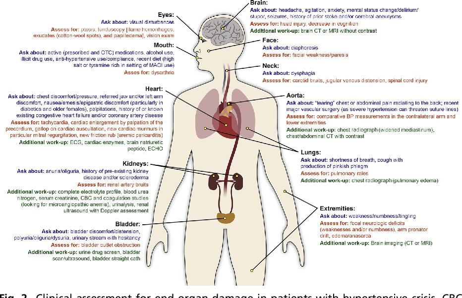 Figure 2 from Hypertensive Emergency  - Semantic Scholar