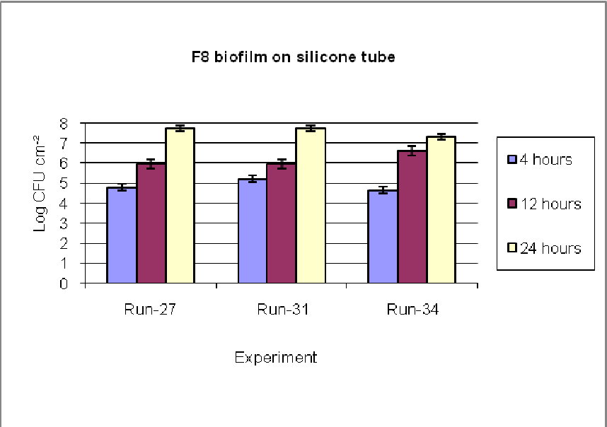 PDF] Biofilm formation of Enterobacter sakazakii on three different