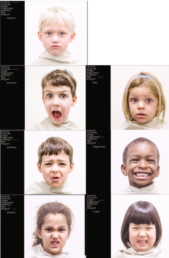 Figure 4 from Active Shape Model vs  Deep Learning for Facial