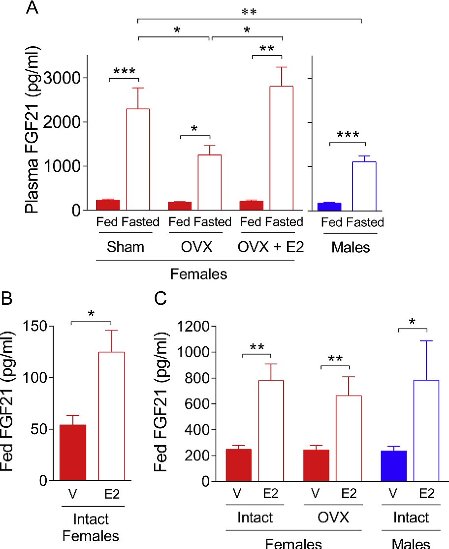 Figure 1: E2 increases serum FGF21 concentrations in female and male mice. (A) Seru ovariectomized mice (OVX), OVX female mice treated with 17b-estradiol (OVX þ E2, 8 mg/k in intact female mice after s.c. treatment with vehicle or E2 (8 mg/kg/d) (n ¼ 4e6). (C) Fed with V or E2 (160 mg/kg/d) (n ¼ 6e25). All mice are C57Bl/6J. Data represent the mea