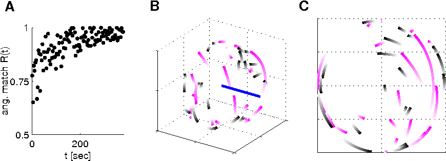 Figure 2 from Functional network reorganization in motor