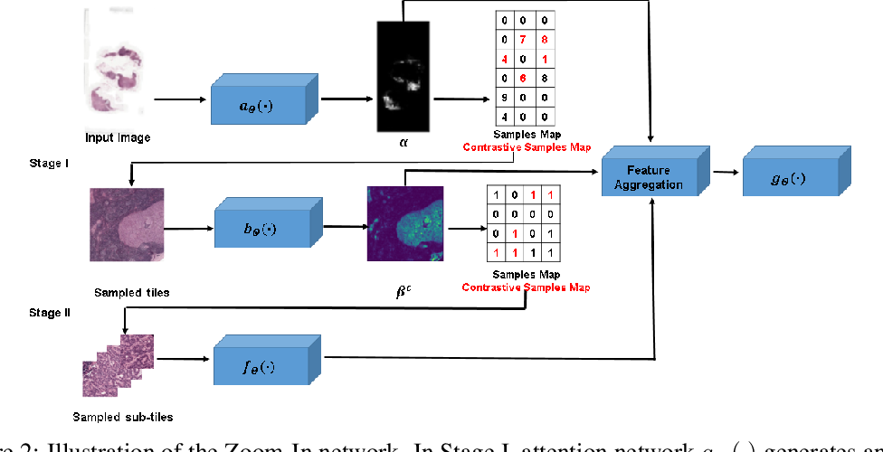 Figure 3 for Efficient Classification of Very Large Images with Tiny Objects