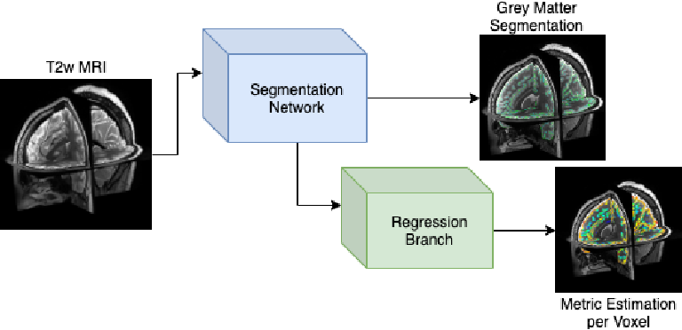 Figure 2 for Surface Agnostic Metrics for Cortical Volume Segmentation and Regression