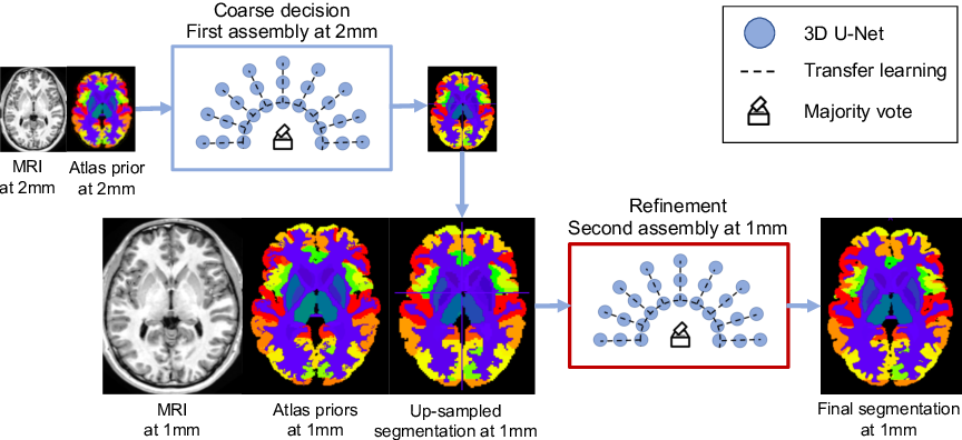 Figure 1 for AssemblyNet: A Novel Deep Decision-Making Process for Whole Brain MRI Segmentation
