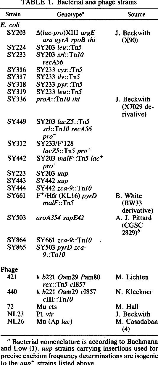 Table 1 from New class of mutations in Escherichia coli (uup) that ...