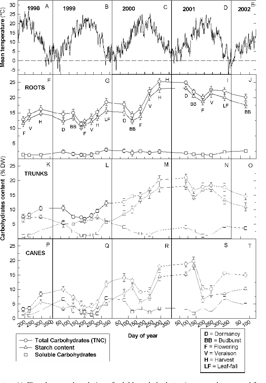 Figure 1 from Carbohydrate reserves in grapevine ( Vitis vinifera L ...
