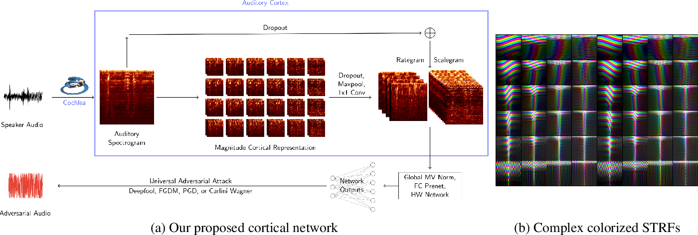 Figure 2 for Cortical Features for Defense Against Adversarial Audio Attacks
