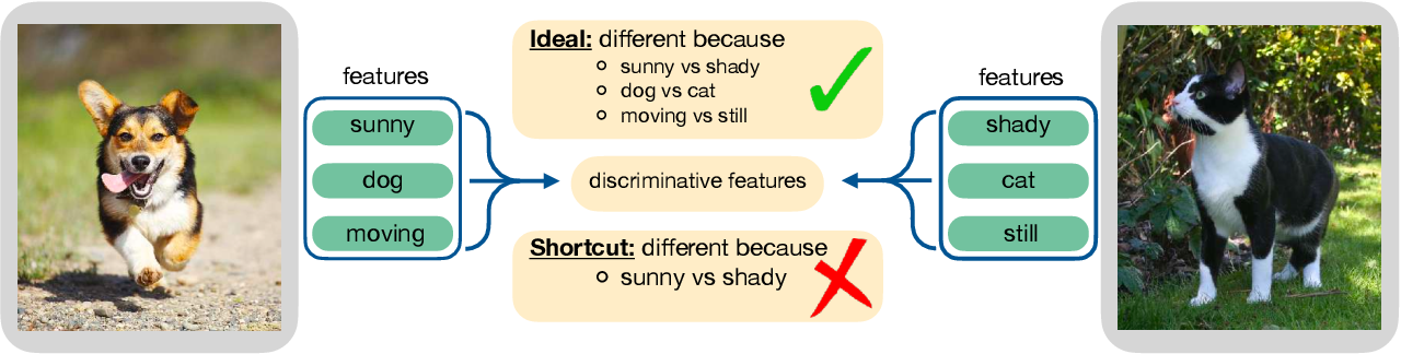Figure 1 for Can contrastive learning avoid shortcut solutions?