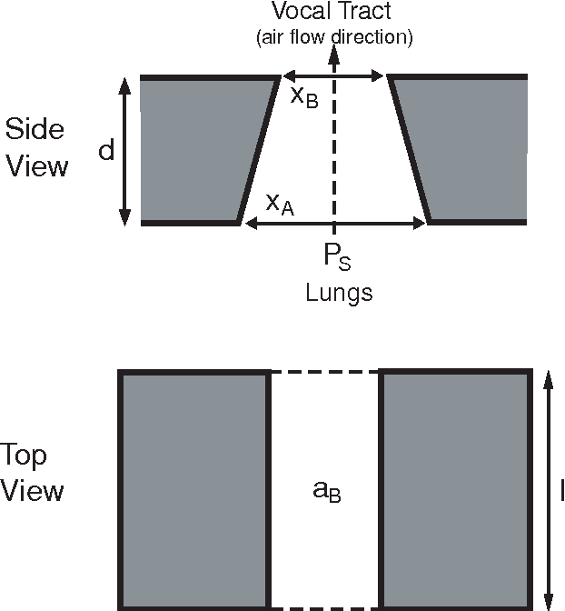 Fig. 3. Geometry and configuration of the nonlinear vocal fold model.