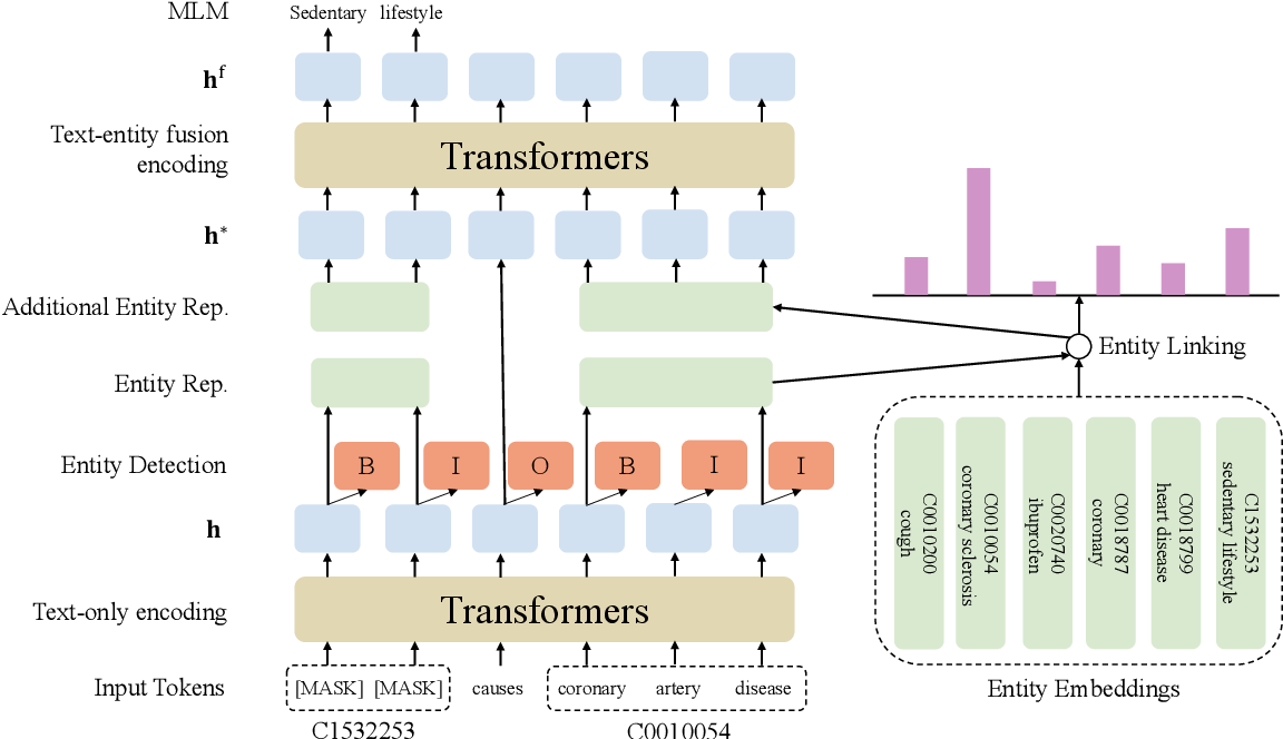 Figure 3 for Improving Biomedical Pretrained Language Models with Knowledge