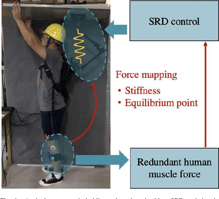Figure 1 for Mapping Human Muscle Force to Supernumerary Robotics Device for Overhead Task Assistance