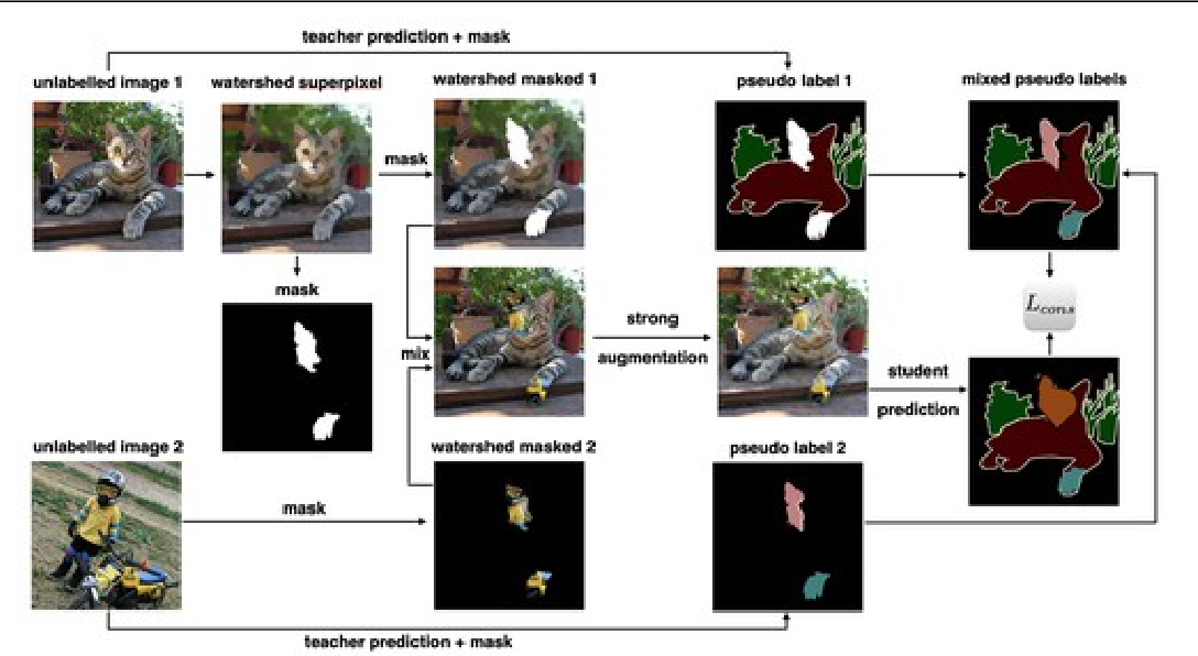 Figure 1 for Reliable Semantic Segmentation with Superpixel-Mix