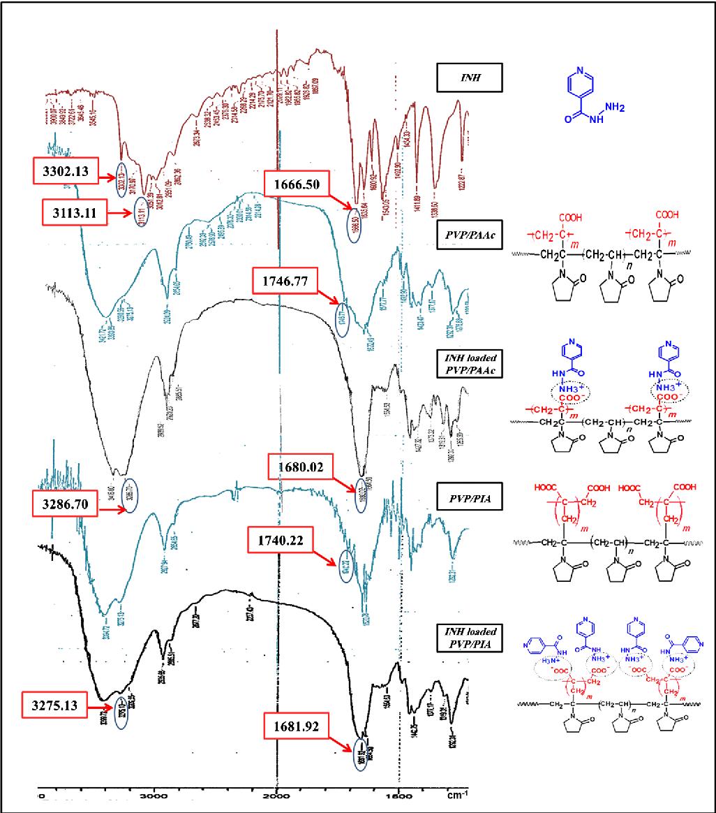 Design of Isoniazid Smart Nanogel by Gamma Radiation-Induced ...