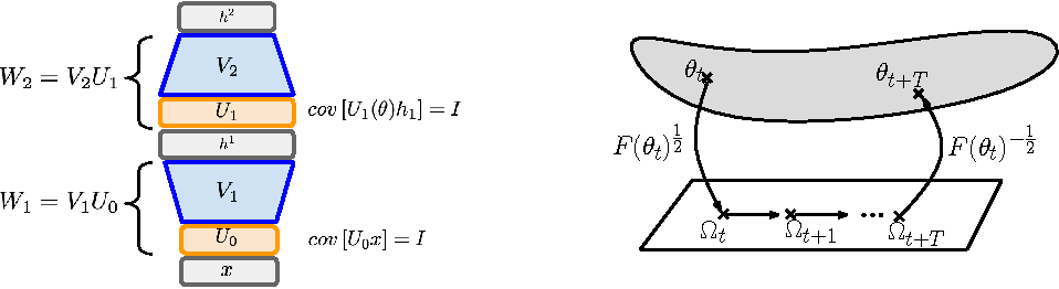 Figure 1 for Natural Neural Networks